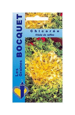 Les Graines Bocquet - Graines De Chicorée Frisée De Ruffec (À Grosses Côtes) - Graines Potagères À Semer - Sachet De 4Grammes