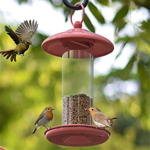 Vogelfütterer Gazebo Wild Bird Feeder Wasserdicht Im Freien Hängend Perfekt Für Garten Dekoration und Vogelbeobachtung Für Vogelliebhaber (Feeder Birdcage)