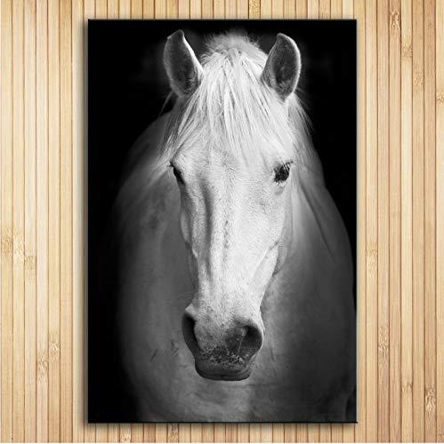 75 Fine Art Prints (Wall Art Prints Fine Art Prints Wandmalerei White Horse (2) Tier Bild Für Wohnzimmer 50 * 75 cm Ohne Rahmen)
