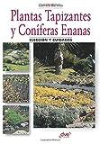 Plantas tapizantes y coníferas enanas