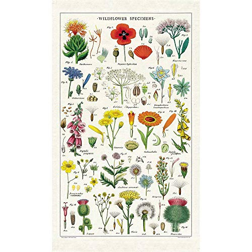 Cavallini Geschirrtuch, Vintage Tea Towels, Wildblumen, Blumenwiese Vintage Tea Towel