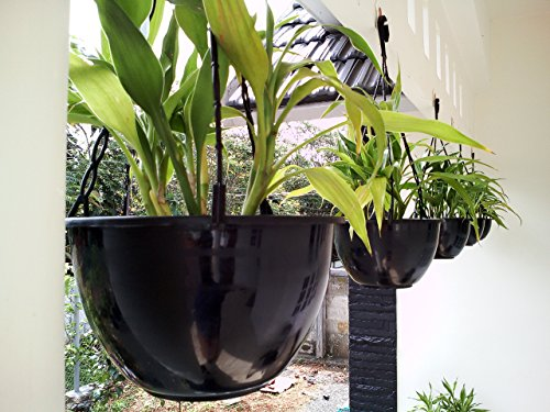Rochfern Hanging Pots /Flower Planter /Plant Containers Pack of 4- Black