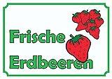 Verkaufsschild Erdbeeren A1 Rückseite selbstklebend
