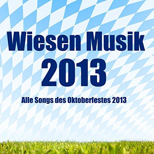 Zruck zu dir (Hallo Klaus) - Musik 2013