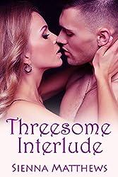Threesome Interlude (Threesome Series Book 1)