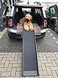 Lüllmann Auto Hunderampe klappbar Kunststoff Anti-Rutsch 155 x 40cm bis 90kg 400280