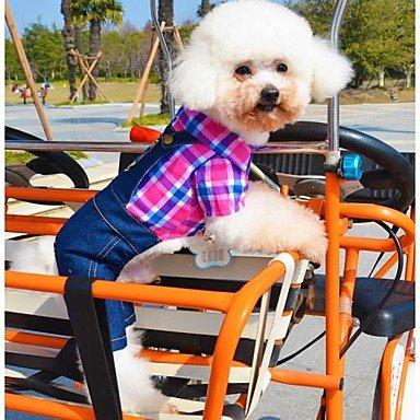 Imagen de perros disfraces mono verde rosa ropa para perro invierno primavera/otoño vaqueros cosplay casual/diario , grün
