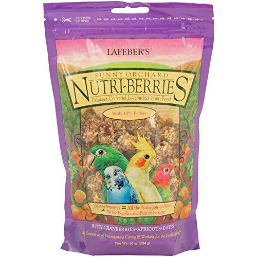 Lafeber? S Gourmet Sunny Orchard nutri-Berries für Nymphensittiche Unzen Tasche -