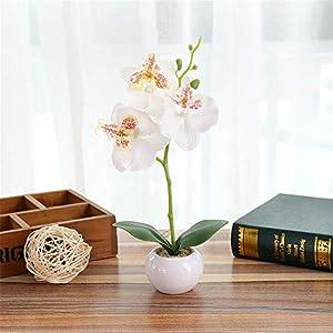 Flor Artificial Mariposa Orquídea tuercas Phalaenopsis Bonsai arte flor accesorios escritorio corte decorativo Artesanía Adorno Planta en maceta casa decoración a la Mode, blanco