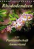 Rhododendren in der Parklandschaft Ammerland / Planer (Tischkalender 2019 DIN A5 hoch): Peter Roder mit einzigartigen Aufnahmen aus Deutschlands ... (Planer, 14 Seiten ) (CALVENDO Natur)