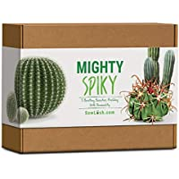 Mighty Spiky Cactus Gift Seed Kit. Everything You Need to Grow 5 Bristling Beauties Packed with Personality