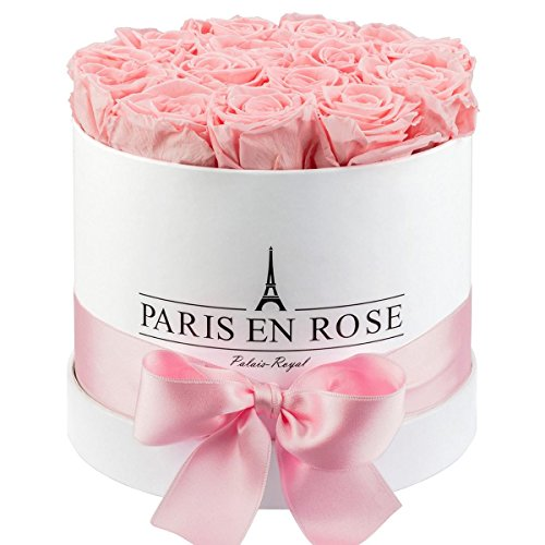 PARIS EN ROSE 204