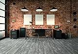 Kransen Design Vinylboden Warm Grey KF98201 Vinyl-Klick-Designboden in Holzdielenoptik mit 0,3mm Nutzschicht - Paket a 2,56m²