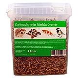 Svänimal 5 Liter Getrocknete Mehlwürmer, Futter für Insekten, Vögel, Reptilien, Kleintiere, Leckerli, Proteinfutter