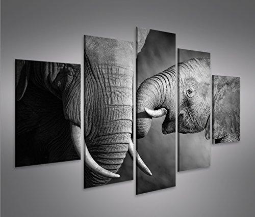Cuadro en Lienzo Elefanten V2 MF Elefantenbaby Impresión sobre lienzo - Formato...