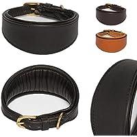 [Gesponsert]Classic-Line von Pear Tannery: Windhundhalsband aus weichem Vollrindleder (gepolsterte Ausführung), M 31-36cm, schwarz