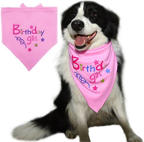 ana Pet Schal für kleine mittlere Große Hunde Zubehör Kleid (Rosa Bandana Party Supplies)