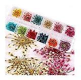 1 Farbe DILLBLÜTEN aus einem bunten MIX - Trockenblumen Dried Flowers - getrocknete Blumen im bunten Mix - CUTE NAILS