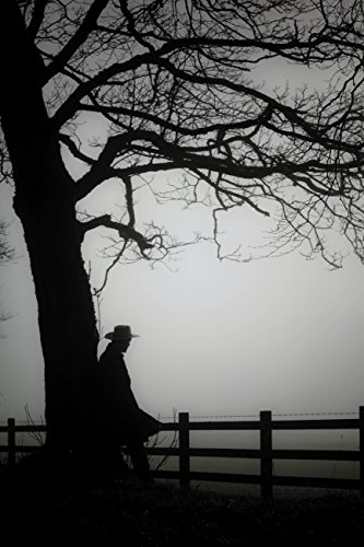 Sombras sobre el lago (Fondo General - Narrativa) por Giovanni Cocco