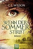 Wenn der Sommer stirbt: Roman