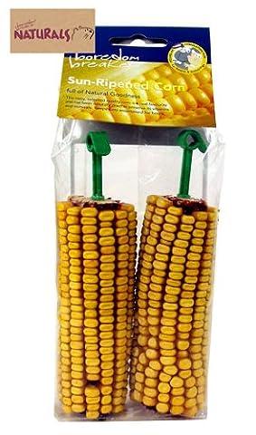 Boredom Breaker Cereal Treats Sun Ripened Corn Pets Small Animals Edible 5025659196435