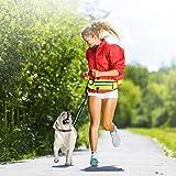 Aridea Guinzaglio per Cani Mani Libere da Corsa, Guinzaglio Estensibile con Cintura Regolabile Borsa Porta Cellulare, Ideale per Corsa Passeggiate Jogging
