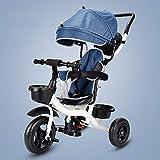 Trois roues for enfants se pliant facile à transporter poussette pédale enfants vélo bébé pousser bébé brouette baby cart ( Couleur : Blue , Size : Titanium empty wheel )