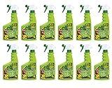 COMPO Duaxo Universal Pilz-frei AF 9 l - Flasche - gegen Rost, Blattfleckenpilze an Rosen & Zierpflanzen