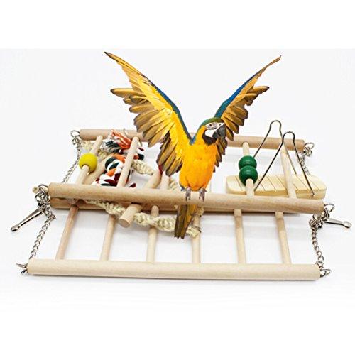 Galleria fotografica UEETEK Legno animale uccello giocattolo appeso Swing trapezio arrampicata ponte scaletta per parrocchetti uccello pappagallo Calopsitte addestramento dell'animale domestico