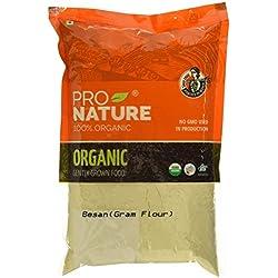 Pro Nature Organic 100% Organic Besan, 500g