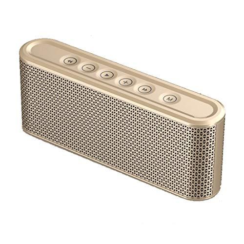 Leilei Bluetooth-Lautsprecher Tragbarer Bluetooth 4.2-Touch-Stereolautsprecher Dual-Driver 8-10h Spielzeit und eingebautes Mikrofon,Gold 2 Schallköpfe
