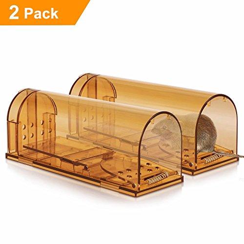2x Menschlich Mäusefalle Freundliche Mausefalle Lebend-Falle für Mäuse, Professinonelle Kastenfalle für innen, außen, Küche, Garten & Haus Kastenfalle