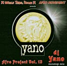 AFRO PROJECT VOL 13