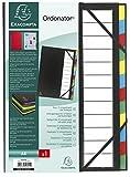 Exacompta - Réf. 55341E - Trieur rigide Ordonator dos extensible 12 compartiments - noir