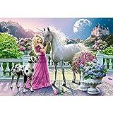Diamant Painting 5D Prinzessin und weißes Pferd DIY Diamant Bild Malerei Stickerei Platz Diamant Zeichnung Home Decor Geschenk Festliche Dekor 40 x 30 cm