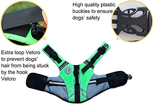 Vivaglory Neuartige Sport Style Ripstop Haustier Hunde-Schwimmweste mit überlegenem Auftrieb und Rettungsgriff -