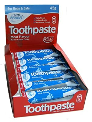 Hatchwell Meat Flavoured Toothpaste for Cats and Dogs 45g