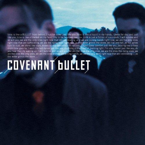 "Bullet (Ellen Allien ""Flow Mix"")"