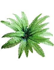Fourwalls Artificial Real Touch Boston Fern Plant Without Vase (55 cm Tall, Green)