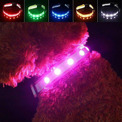 LED Hunde Sicherheits Halsband Hundehalsband, Pawow USB wiederaufladbare Mehrfarbig Blinkende Leuchtendes Adjustment Hundeleine für Hunde (Sicherheit Hund Halsband)