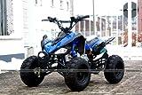 ATV Quad Carbon 125ccm Pocket Bike - 2