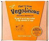 Pflanze-n-Grow Vegalicious Sorte ist die Würze des Lebens Gemüse anzubauen Kit