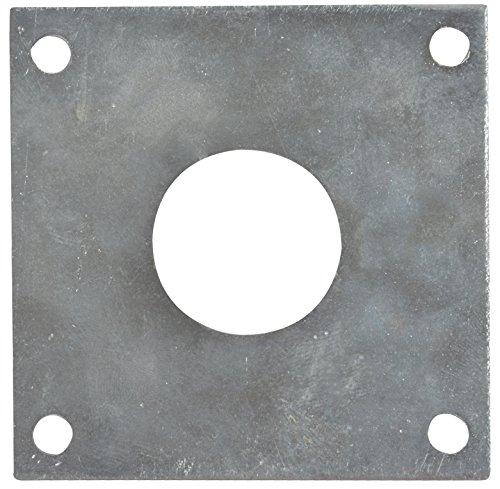 Esschert Design NKPP Schutzplatte, Schutz für Blaumeisen