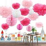 Himeland 15x Seidenpapier Pompoms Wabenball Set, Party-Dekoration Pom Pom für Geburtstag, Hochzeit, Baby Dusche, Parteien als