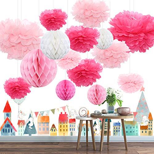Himeland 15x Seidenpapier Pompoms Wabenball Set, Party-Dekoration Pom Pom für Geburtstag, Hochzeit, Baby Dusche, Parteien als Kinderzimmer Huaptdako