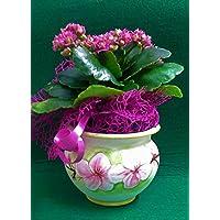 Sottovaso in ceramica linea fiori.
