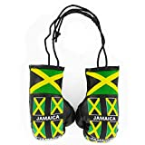 Jamaica Flag Mini Boxing Gloves for the Car or Home (Leather)