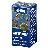Artemia Eier, 20 ml