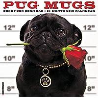 Pug Mugs 2016 Calendar: Good Pugs Gone Bad