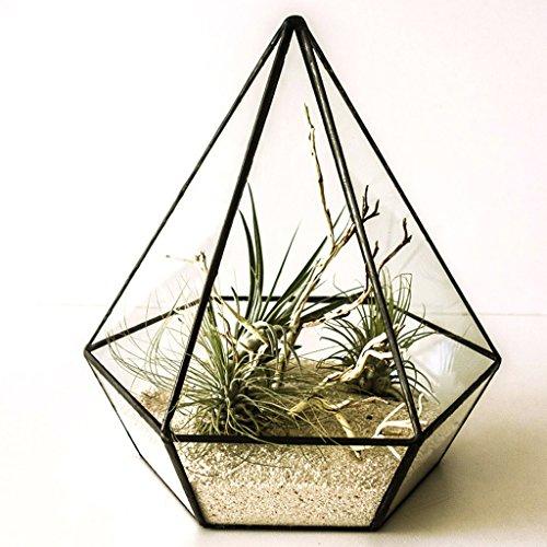 YUAN Geometrische Blume Glas hängenden polygonalen lebenden Blume manuelle DIY Container hohlen transparenten Glasrahmen (größe : A)